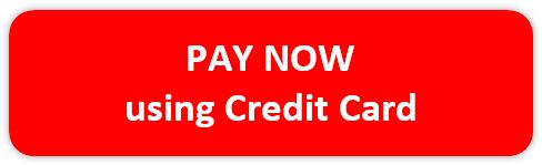 Pay now using credit card