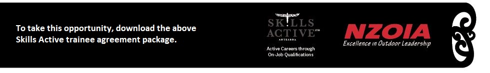 Skills Active nzoia download logo