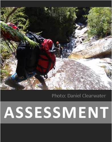 Home page assessment button