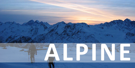 alpine button